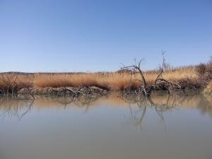 Walking along the Rio Grande