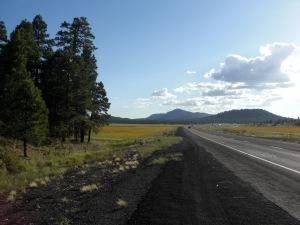 I-40 near Flagstaff
